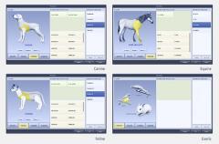 Přímá digitalizace - bezdrátový flat panel Rayence Xmaru 1012WCC